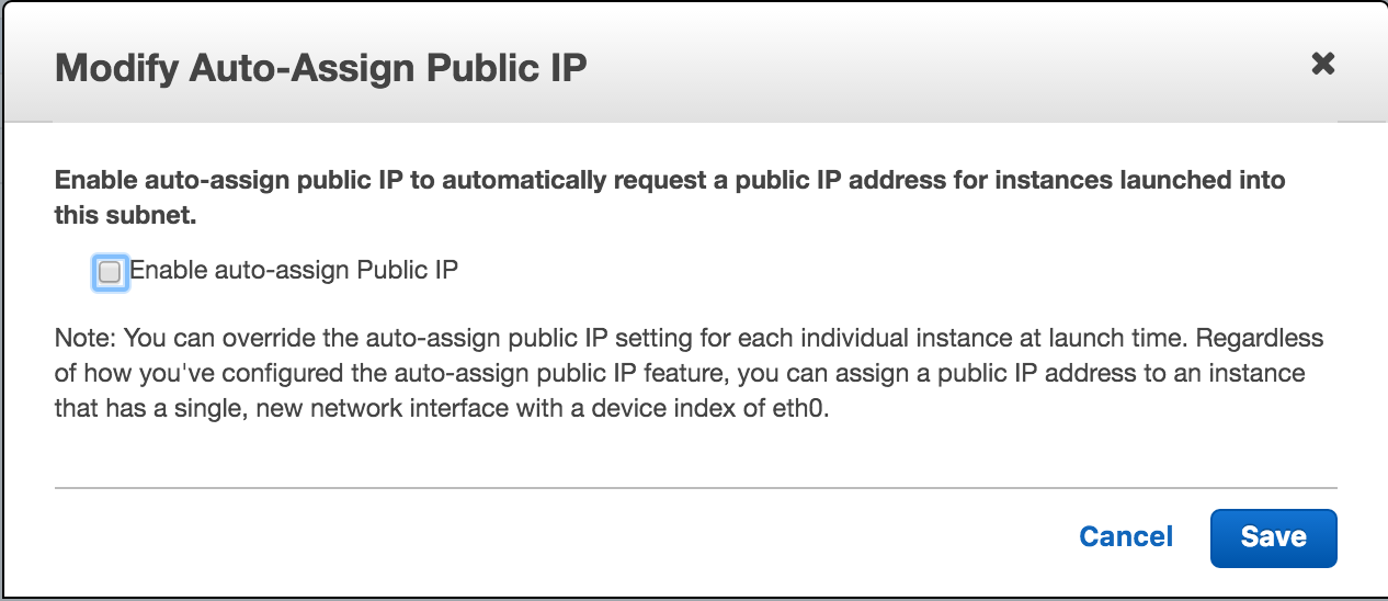Agent Auto-Assign Public IP